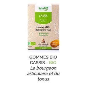 Herbalgem -  GOMMES BIO CASSIS - BIO - 24 gommes