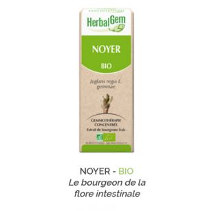 Herbalgem -  NOYER - BIO Le bourgeon de la flore intestinale Gemmothérapie concentré - 30 ml
