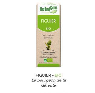 Herbalgem -  FIGUIER - BIO Le bourgeon de la détente Gemmothérapie concentré - 30 ml