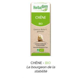 Herbalgem -  CHÊNE - BIO Le bourgeon de la stabilité Gemmothérapie concentré - 30 ml