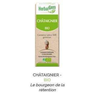 Herbalgem -  CHÂTAIGNIER - BIO Le bourgeon de la rétention Gemmothérapie concentré - 30 ml