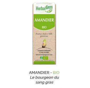 Herbalgem -  AMANDIER - BIO Gemmothérapie concentré - 30 ml
